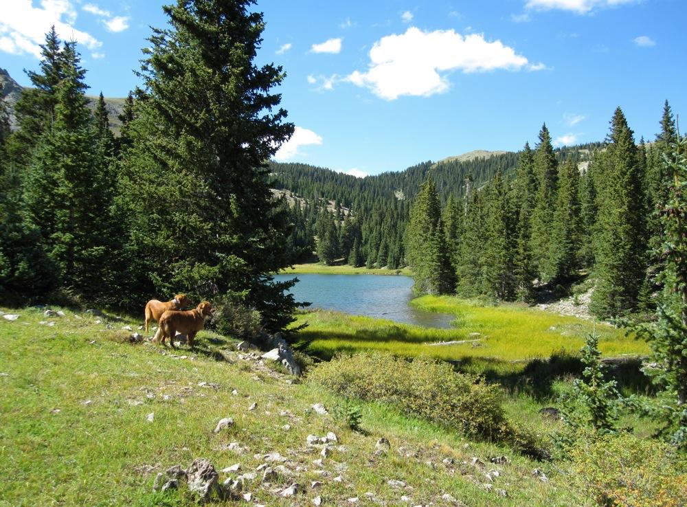 Alan S Pictures Misc 187 Gobi Trobes 187 Heart Lake New Mexico